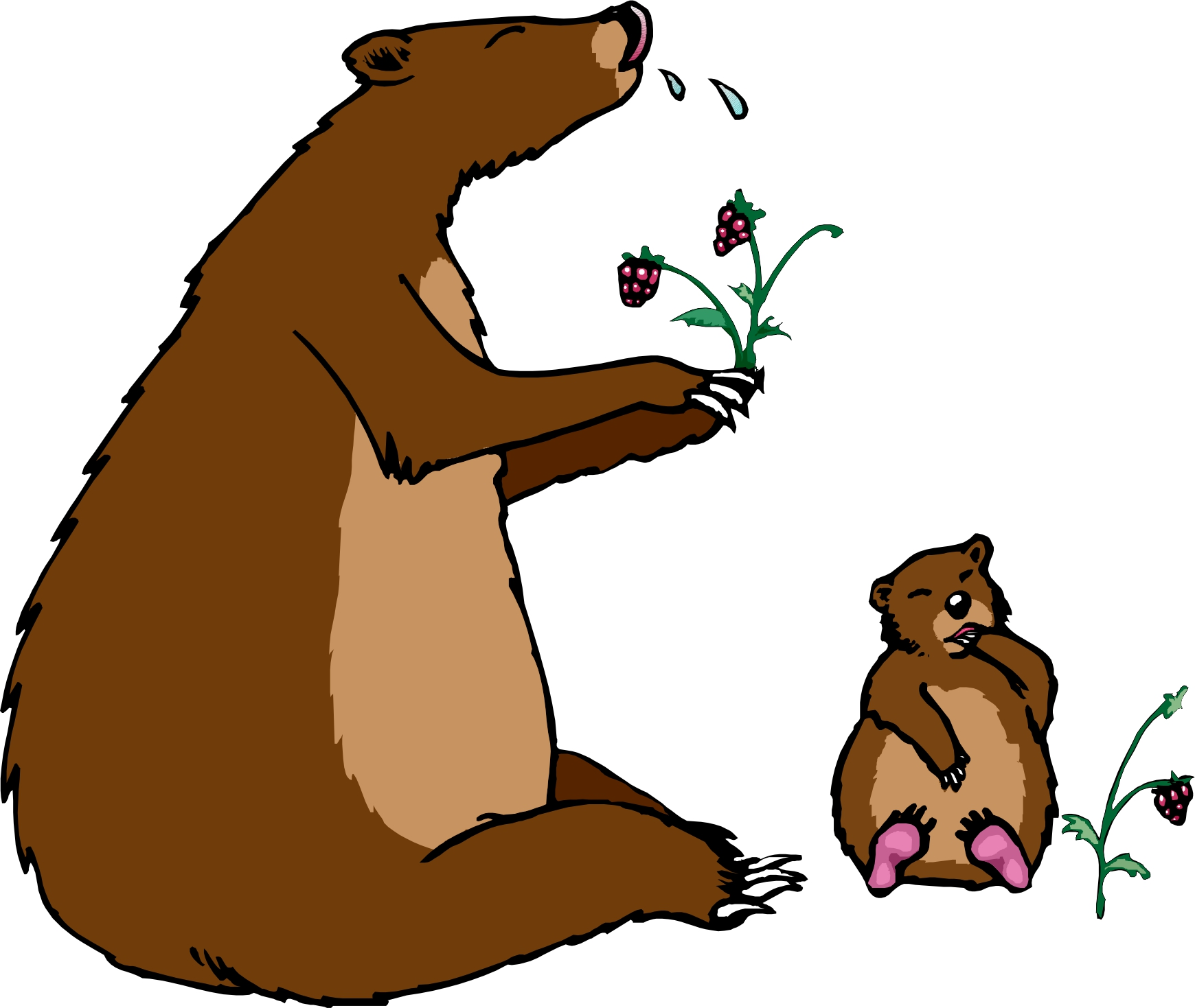Brown clipground bear free. Berries clipart cartoon