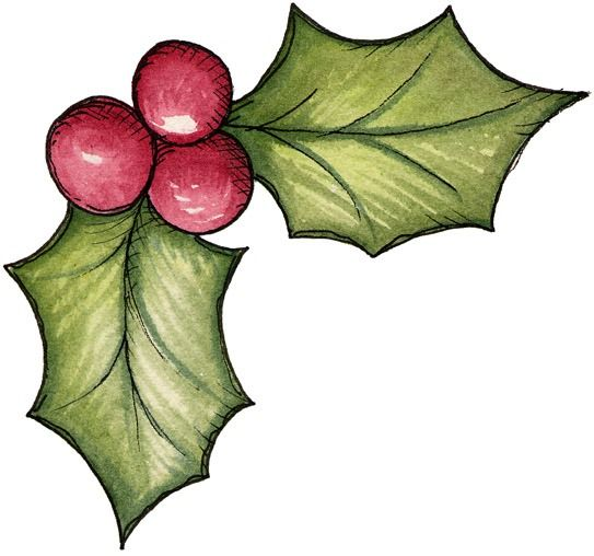Berry clipart winter.  best christmas images