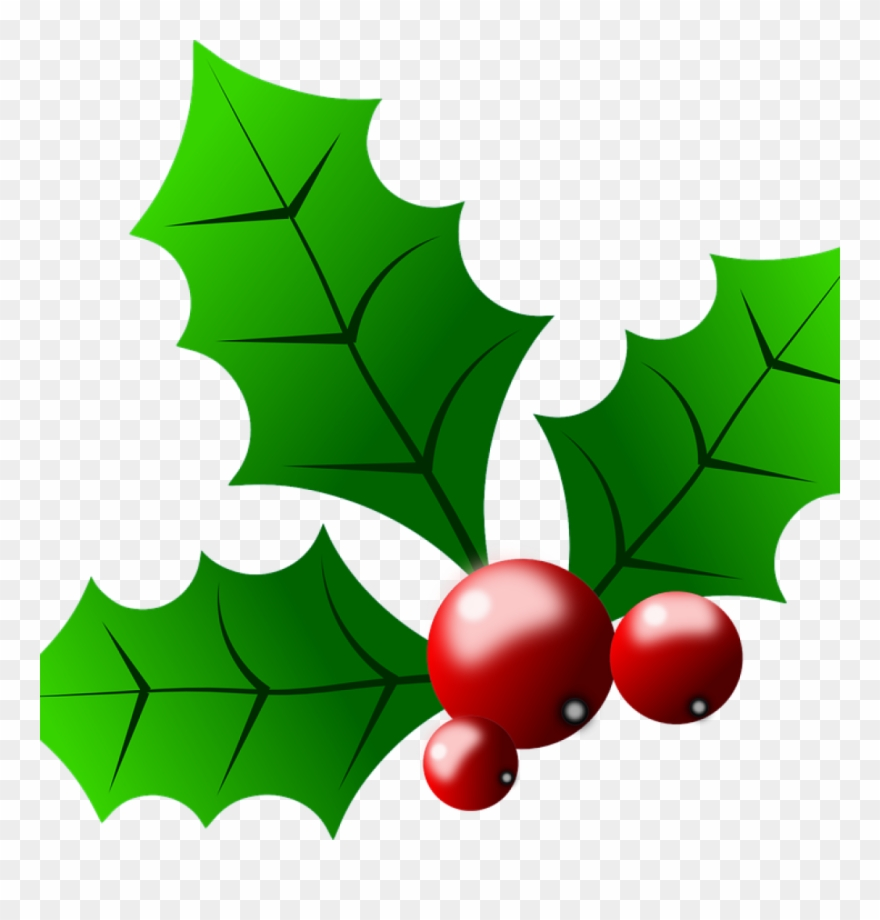 Holly clipart christmast. Images free collection of