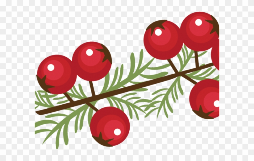 Berry winter christmas png. Berries clipart clip art