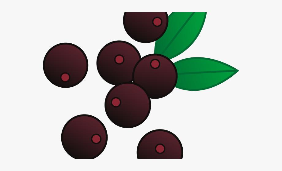 One blueberry transparent . Berries clipart clip art