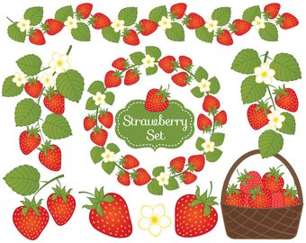Berry clipart. Etsy strawberry vector strawberries