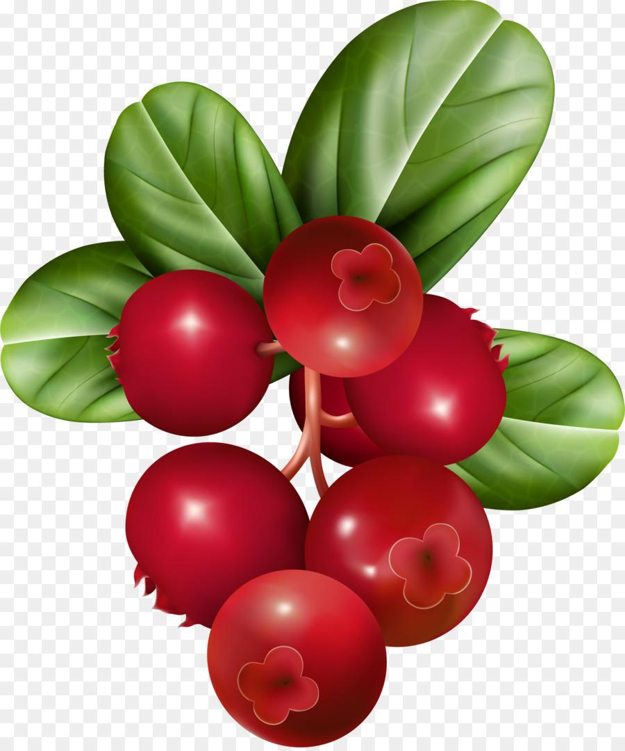 Blueberries clipart cranberry. Raspberry fruit clip art