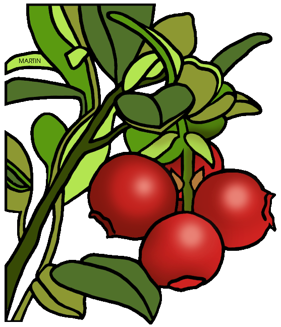Holly clipart cranberry. United states clip art