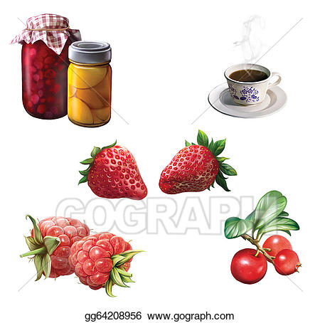 Stock illustration summer harvesting. Berries clipart cranberry