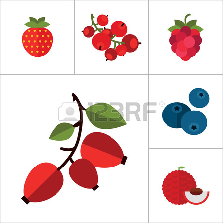 Cliparts free download best. Berries clipart cranberry