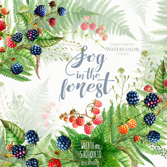 Boho clipart forest. Watercolor wedding blackberries raspberries