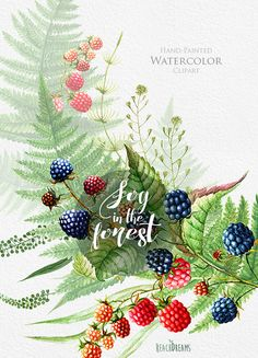 Watercolor hand drawn blueberry. Berries clipart forest berry