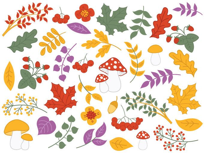 Berries clipart forest berry.  off sale digital