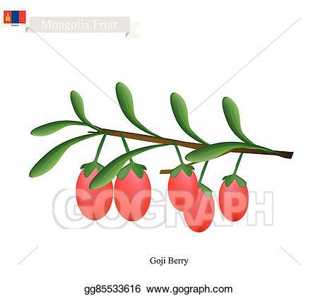 Vector art berry a. Berries clipart goji berries