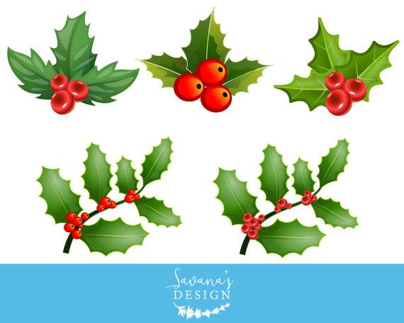 Holly mistletoe clip art. Berries clipart holiday