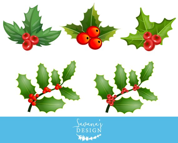 Berries clipart holiday. Pin on products