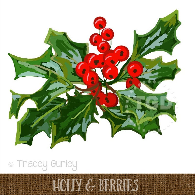 Holly clip art digital. Berries clipart holiday