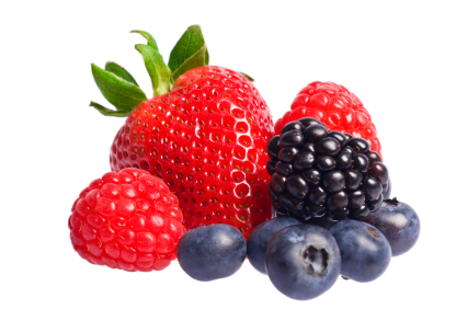 Berry panda free images. Berries clipart mix