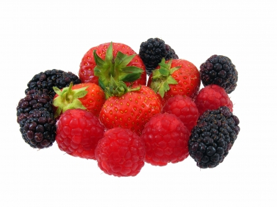 collection of high. Berries clipart mixed berry