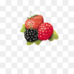 Berries clipart mixed berry. Png images vectors and