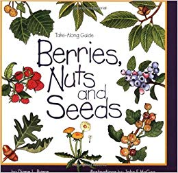 Berries clipart nuts. And seeds take along