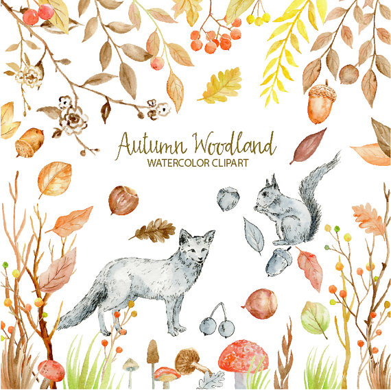 Berries clipart nuts. Watercolor autumn woodland fox