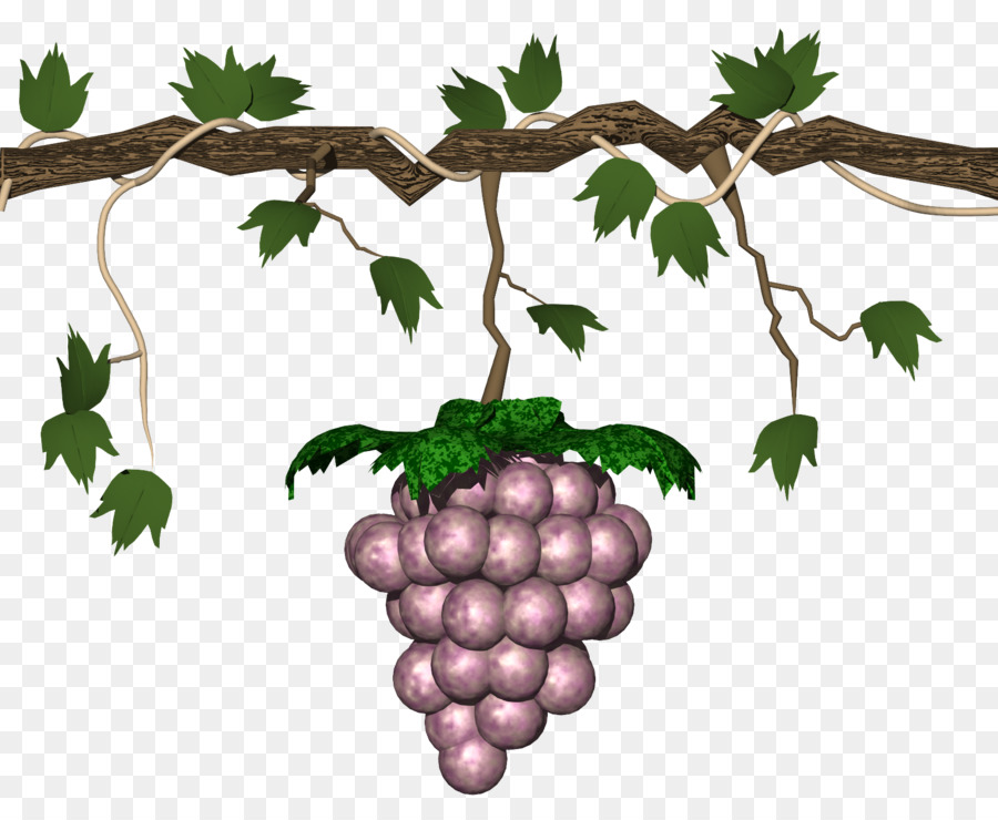 Berries clipart nuts. Grape animation clip art