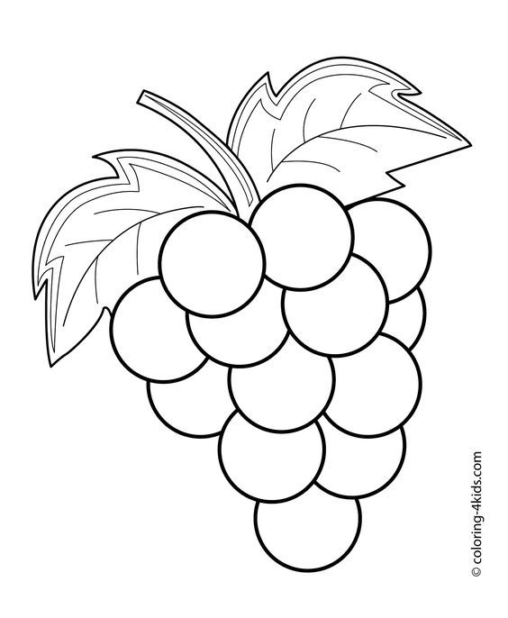 Grapes fruits and coloring. Berries clipart outline