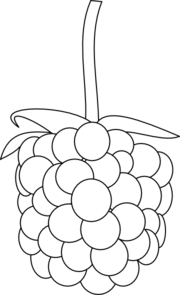 Berries clipart outline. Free berry cliparts download