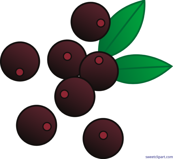 Winter clipart berry. Sweet clip art page