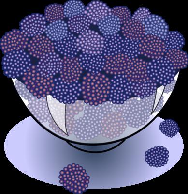 Berries clipart purple berry. Image blackberries food clip