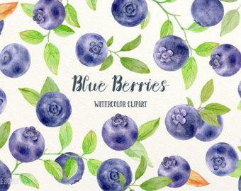 Berries clipart purple berry. Watercolour etsy watercolor blue