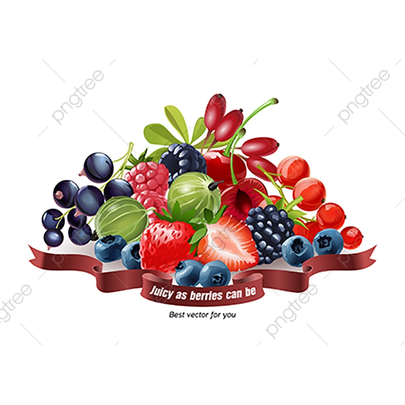 Mix of fresh isolated. Berries clipart purple berry