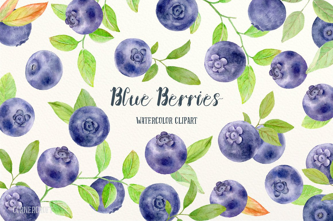 Blueberry clipart purple berry. Watercolor blue berries blueberries