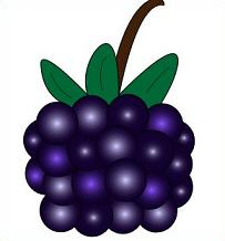 Free black cliparts download. Berries clipart purple berry