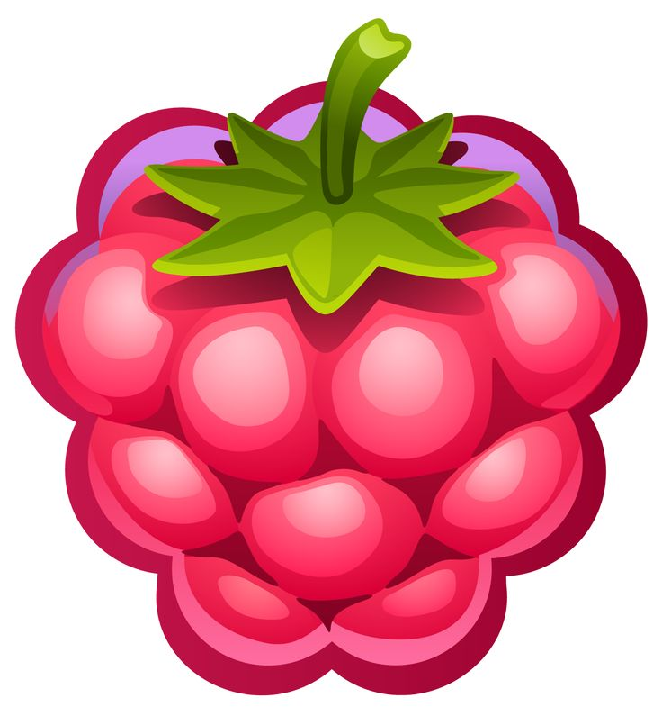best images on. Berries clipart raspberry