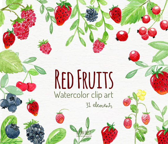 Berries clipart raspberry. Watercolor fruits clip art