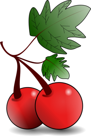 Panda free images berryclipart. Berry clipart red object
