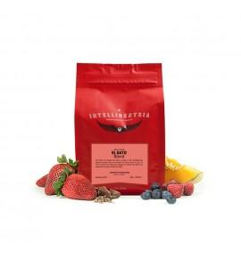 Berries clipart single. Light roast coffee blends