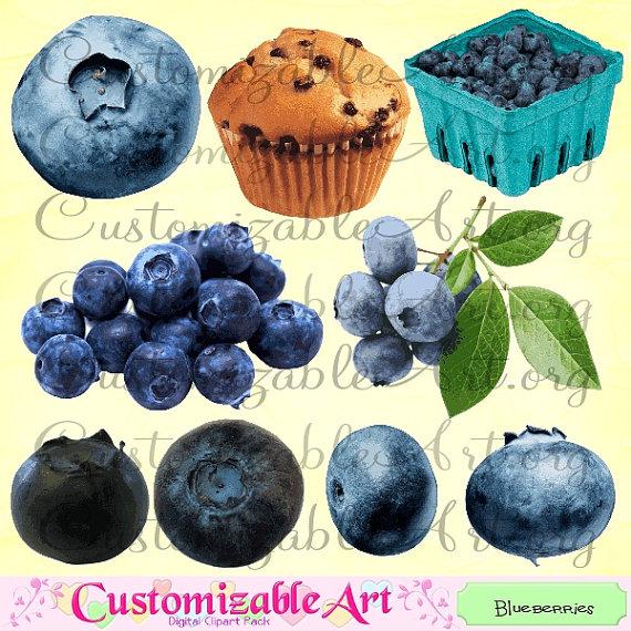 Blueberry digital blueberries clip. Berries clipart single
