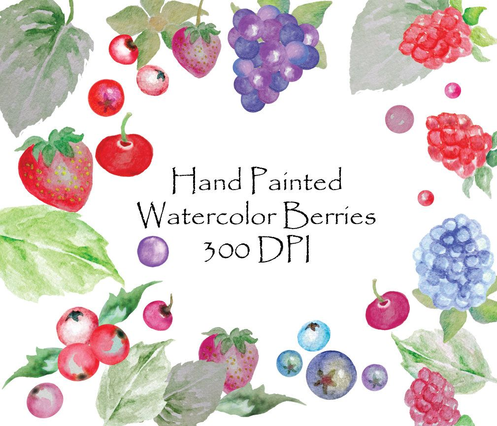 Berries clipart strawberry blueberry. Hand painted watercolor berry