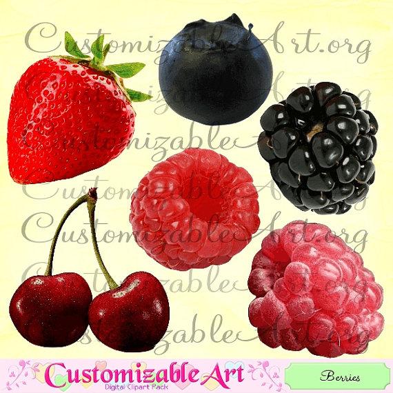 Berry digital raspberry . Berries clipart strawberry blueberry