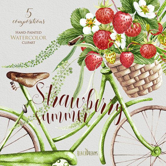 Berries clipart summer. Strawberries watercolor days vintage