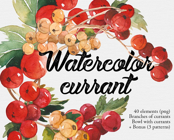 Berries clipart summer. Watercolor currant red juicy
