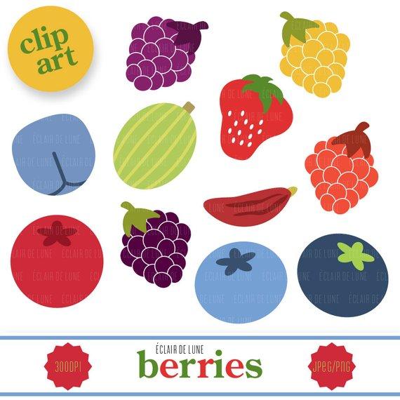 Berry clip art fruit. Berries clipart summer