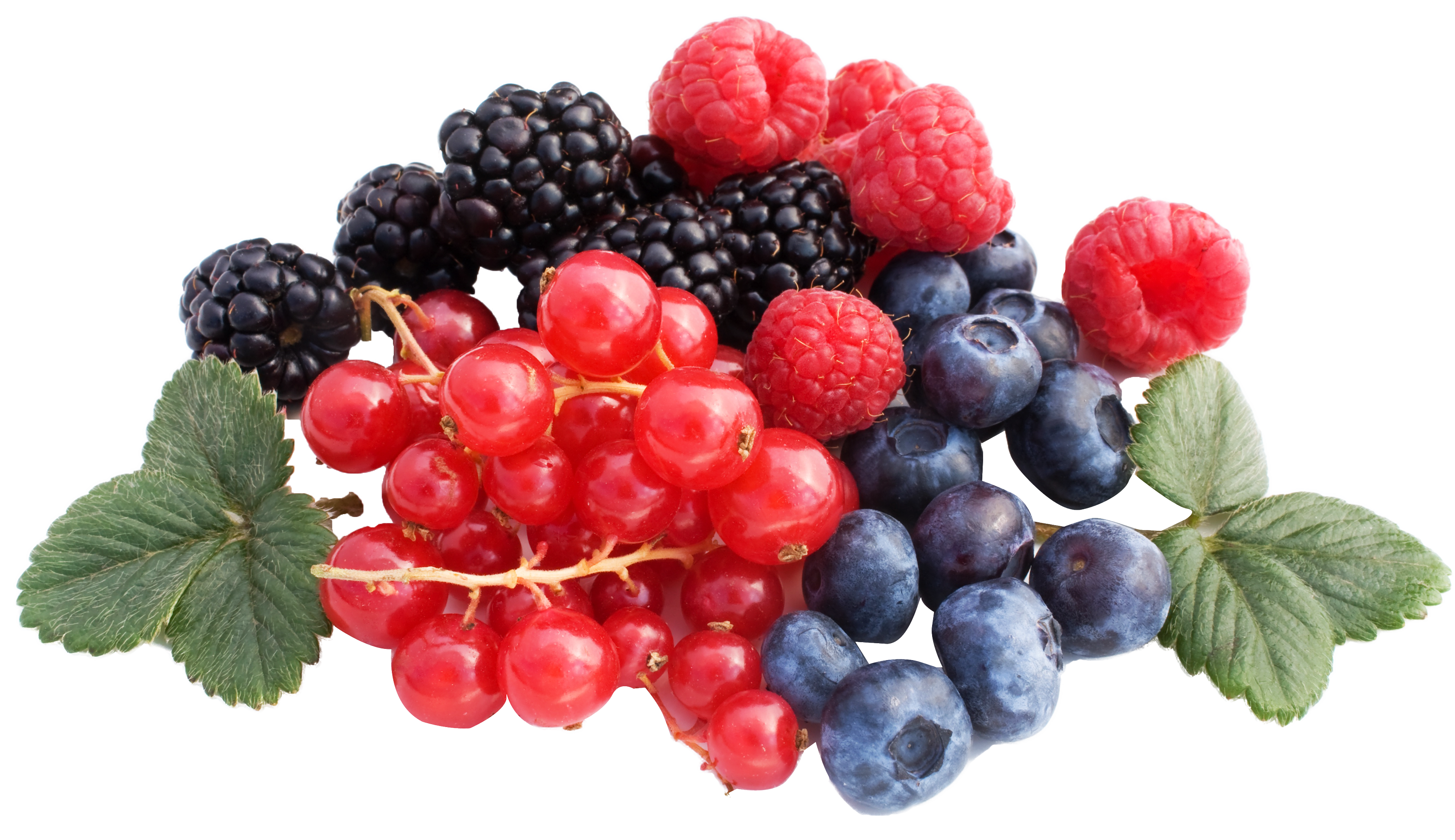 Berry png hd images. Berries clipart transparent background