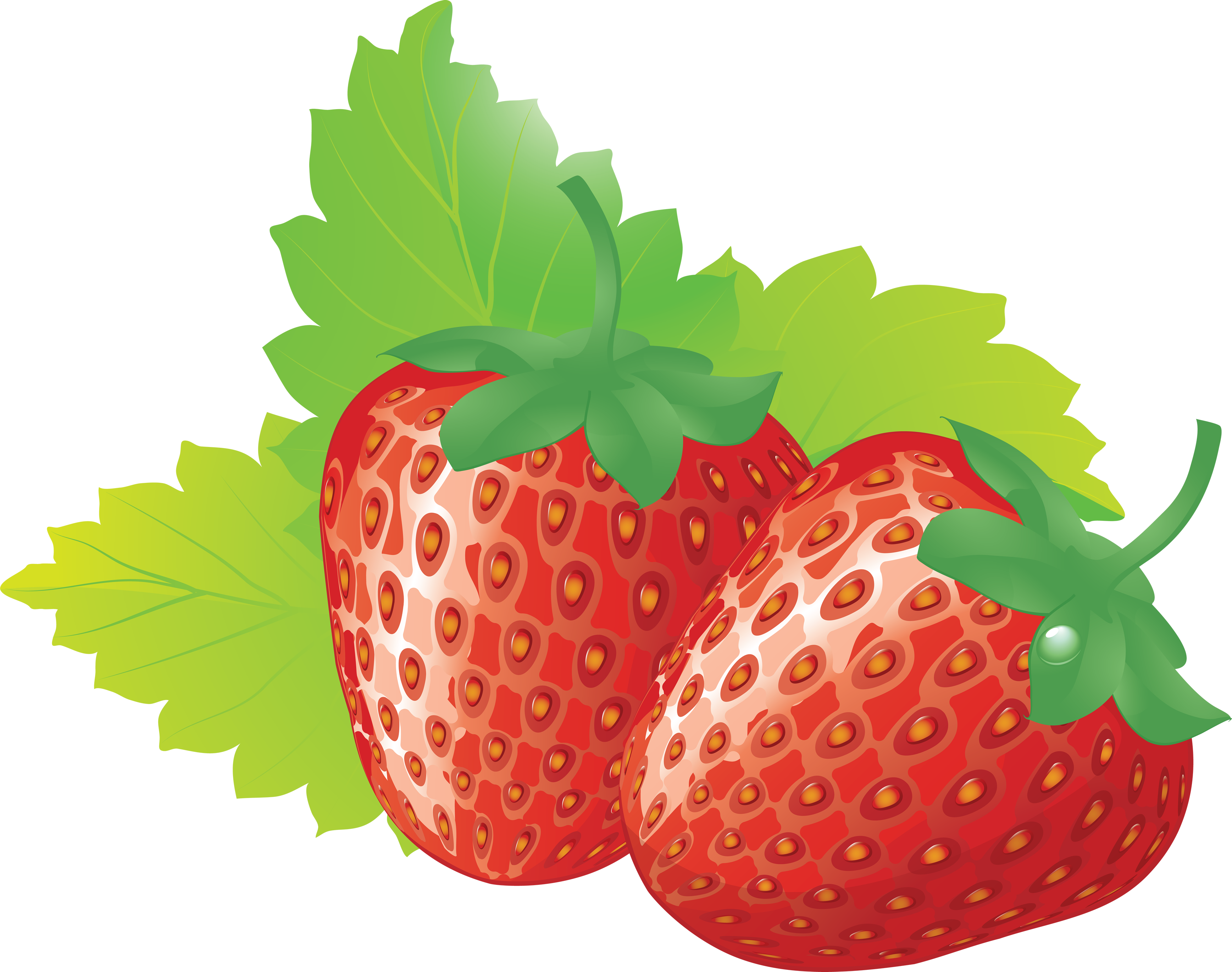 Strawberries clipart clear background. Strawberry png image picture