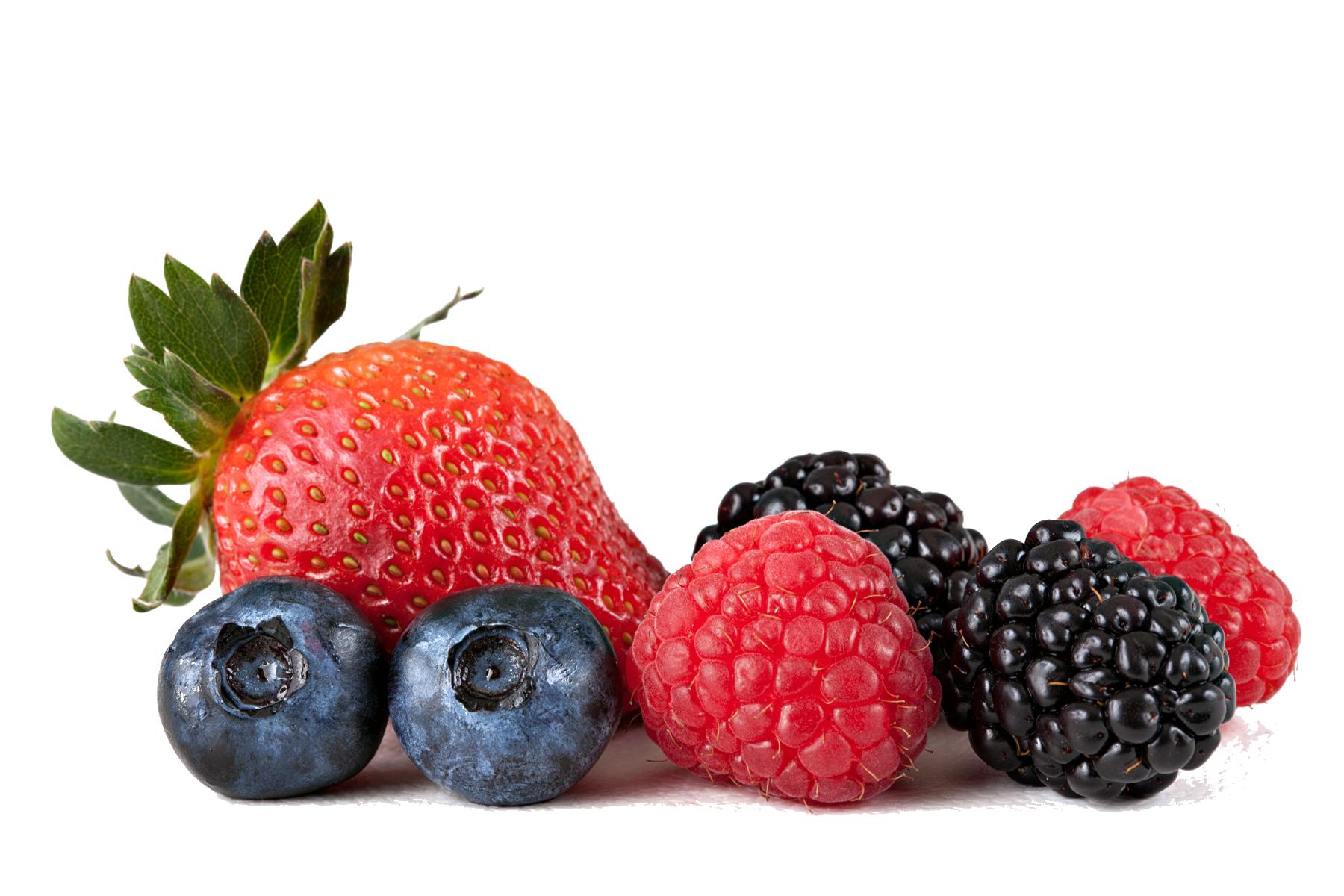 Berries clipart transparent background. Png mart