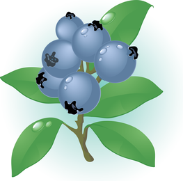 Red graphics to download. Berries clipart vector