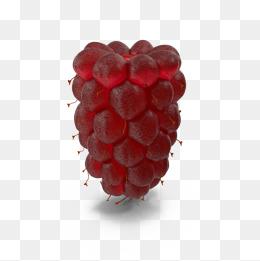 Berry fruit png vectors. Berries clipart vector