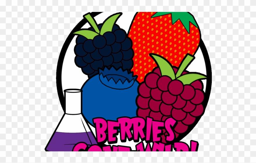 Berries clipart wild berry. Raspberry cartoon png