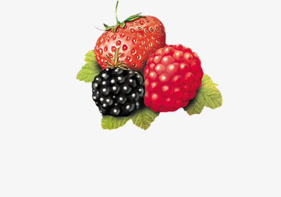 Blueberry clipart wildberry. Strawberry and wild berry