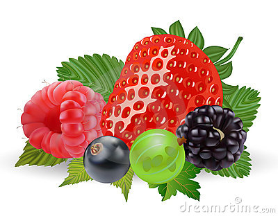 Berry panda free images. Berries clipart
