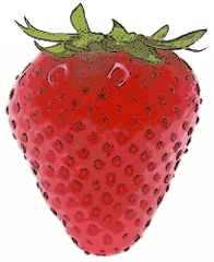 Free pages of public. Berry clipart